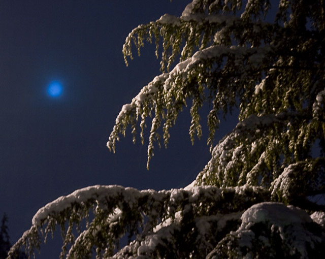 2am moon and snow